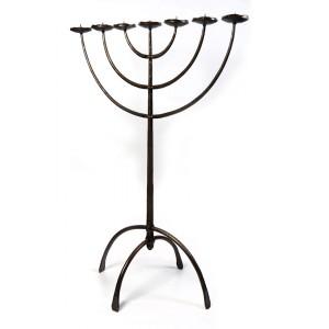 Svícen židovský